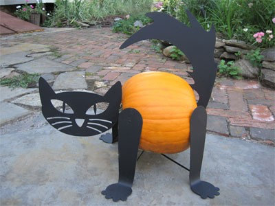 Pumpkin Cat Kit