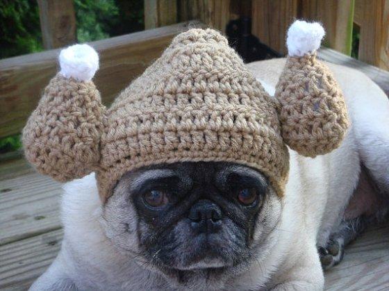 Gobble Gobble Turkey Hat