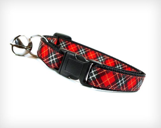 %22Rebel Yell%22 Cat Collar