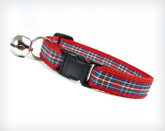 %22Talk of the Town%22 Cat Collar