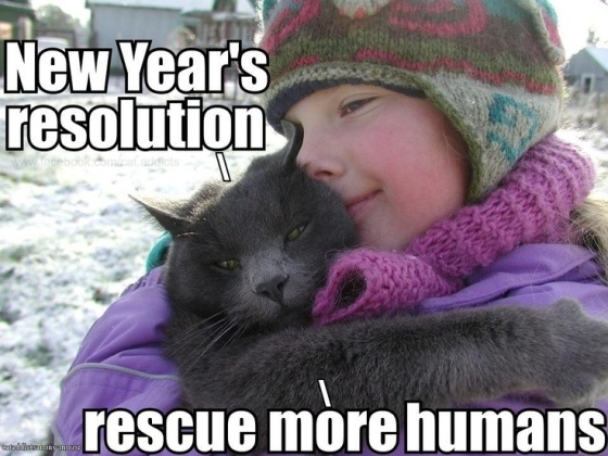 Rescue More Humans