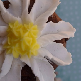 Better Chocolate Cupcakes- Rose Tip and Star Tip