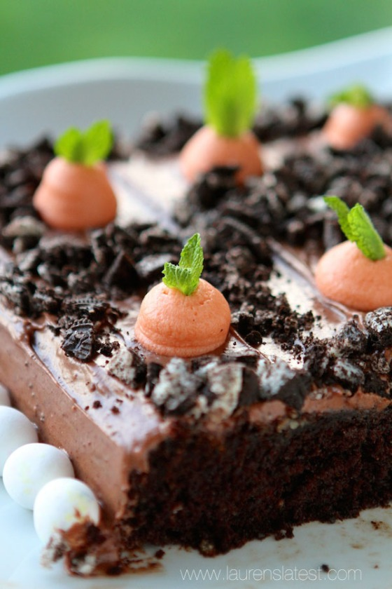 Planted Carrot Chocolate Easter Cake