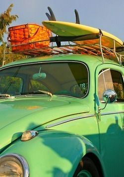 Beach VW Bug | Faith, Hope, Love, and Luck Survive Despite a Whiskered Accomplice