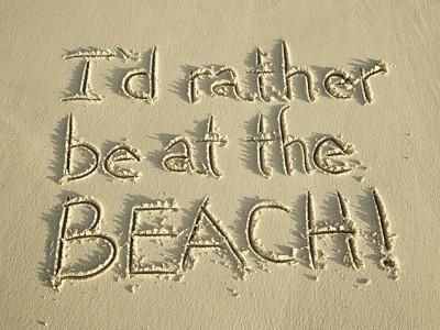 I'd Rather Be at the Beach! | Faith, Hope, Love, and Luck Survive Despite a Whiskered Accomplice
