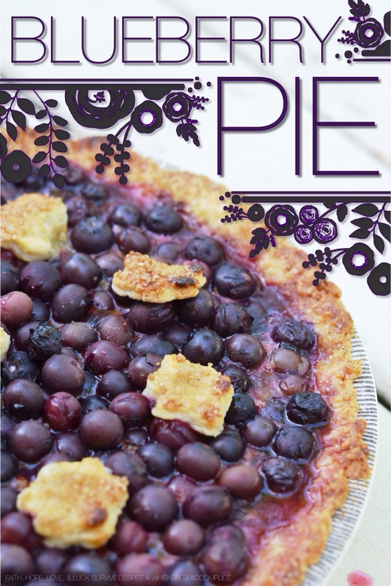 Blueberry Pie | Faith, Hope, Love, and Luck Survive Despite a Whiskered Accomplice