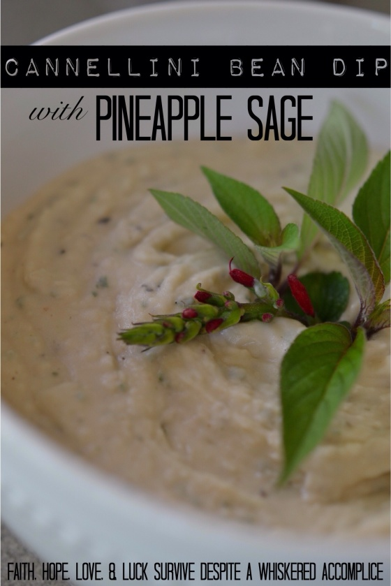 Cannellini Bean Dip with Pineapple Sage | Faith, Hope, Love, and Luck Survive Despite a Whiskered Accomplice