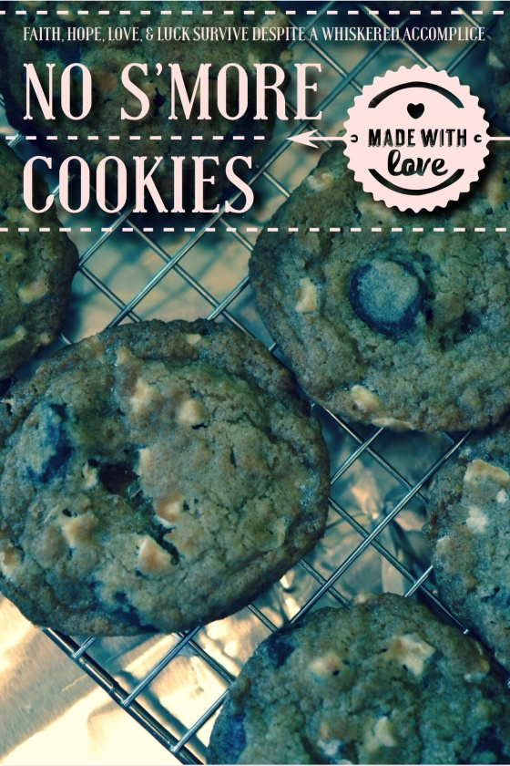 No S'more Cookies | Faith, Hope, Love, and Luck Survive Despite a Whiskered Accomplice
