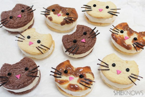 Kitty Cat Ice Cream Sandwich Faces | Faith, Hope, Love, and Luck Survive Despite a Whiskered Accomplice