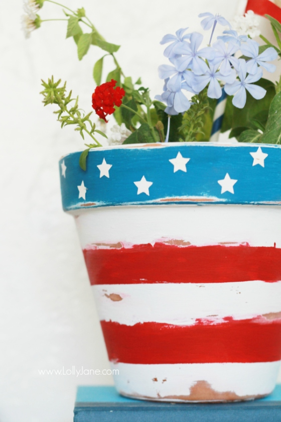 Stars and Stripes Patriotic Flower Pot | Faith, Hope, Love, and Luck Survive Despite a Whiskered Accomplice